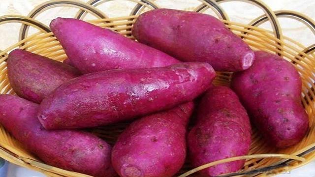 红薯烘干机零食中的战斗机【主牧安】