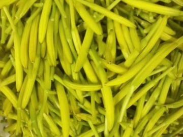 黄花菜烘干机厂家