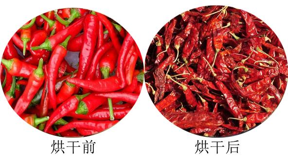 辣椒烘干前后对比图