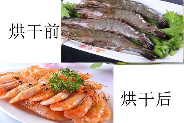 大虾烘干前后对比